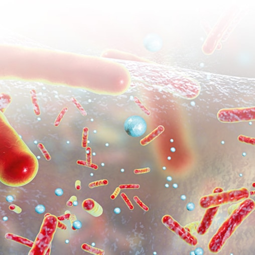 3D illustration showing of bacteria.